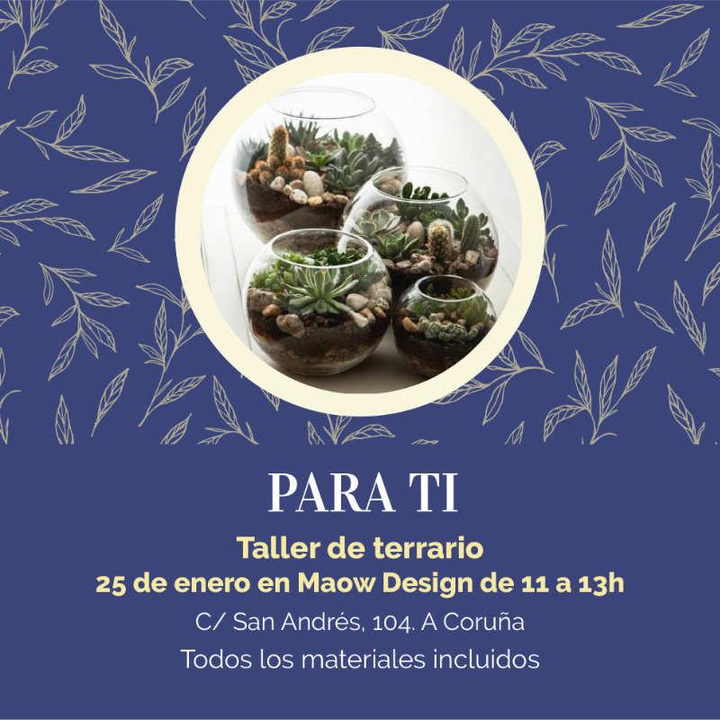 taller de terrario en Coruña