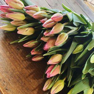 Ramo de tulipanes de la semana