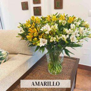 RAMO DE ASTROMELIAS ( 20 tallos)
