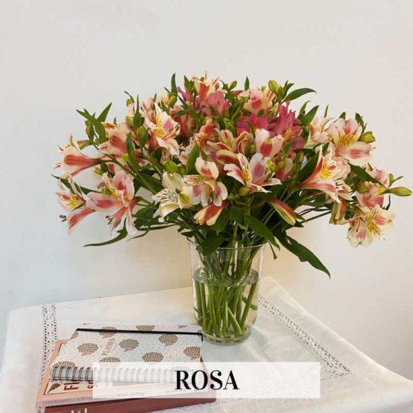 ramo flores seca color rosa