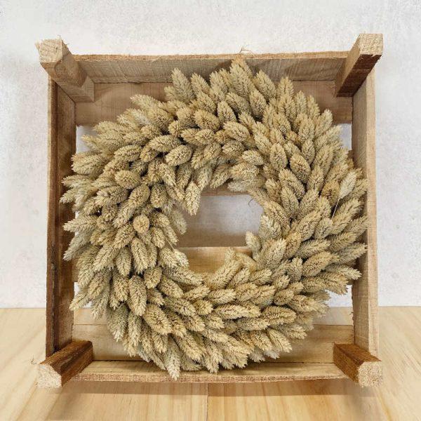 Corona phalaris detalle floradeira