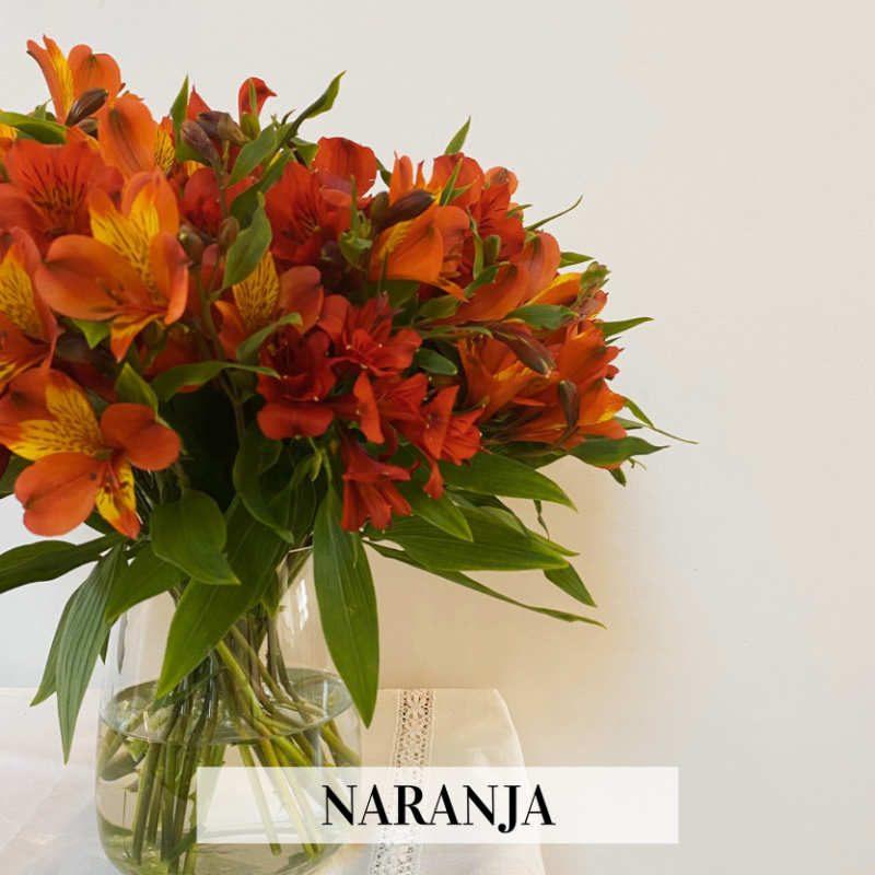 ramo flores secas naranja